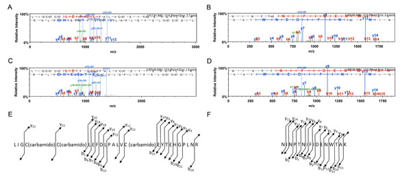 The Arabidopsis ZED1 pseudokinase is required for ZAR1-mediated immunity induced by the Pseudomonas syringae type III effector HopZ1a