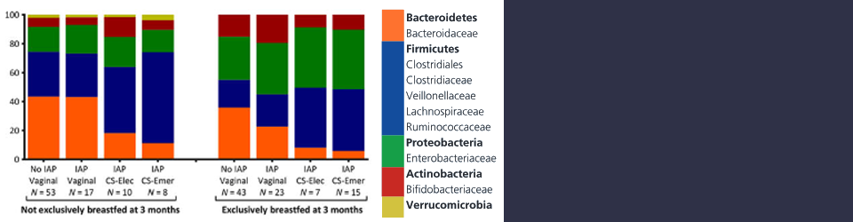 Impacts on gut microbiota during the first year of life